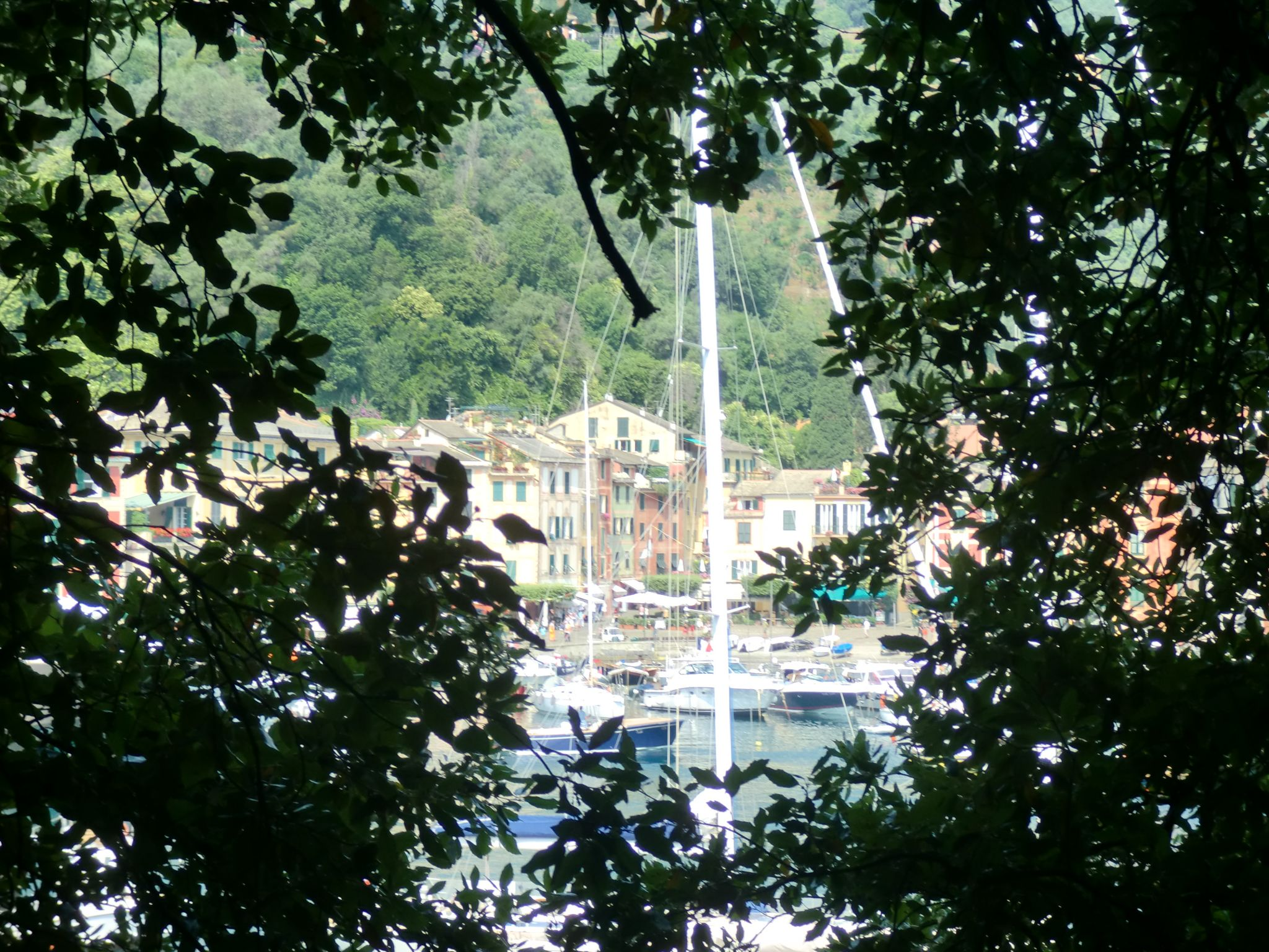 Portofino 19 - Portofino: a small pearl on the sea
