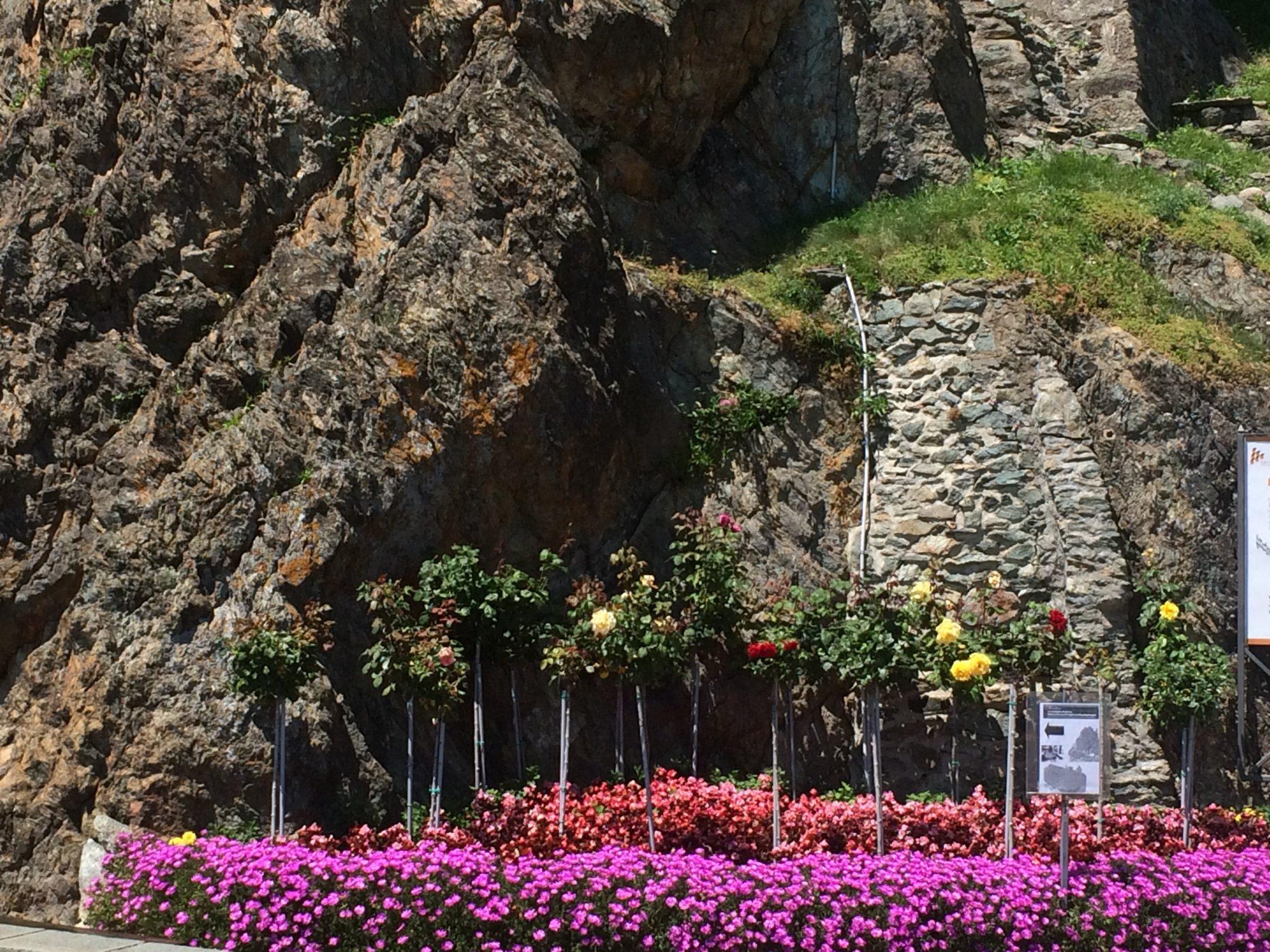 img 4233 - Sacra di San Michele: a monastery on the rocks