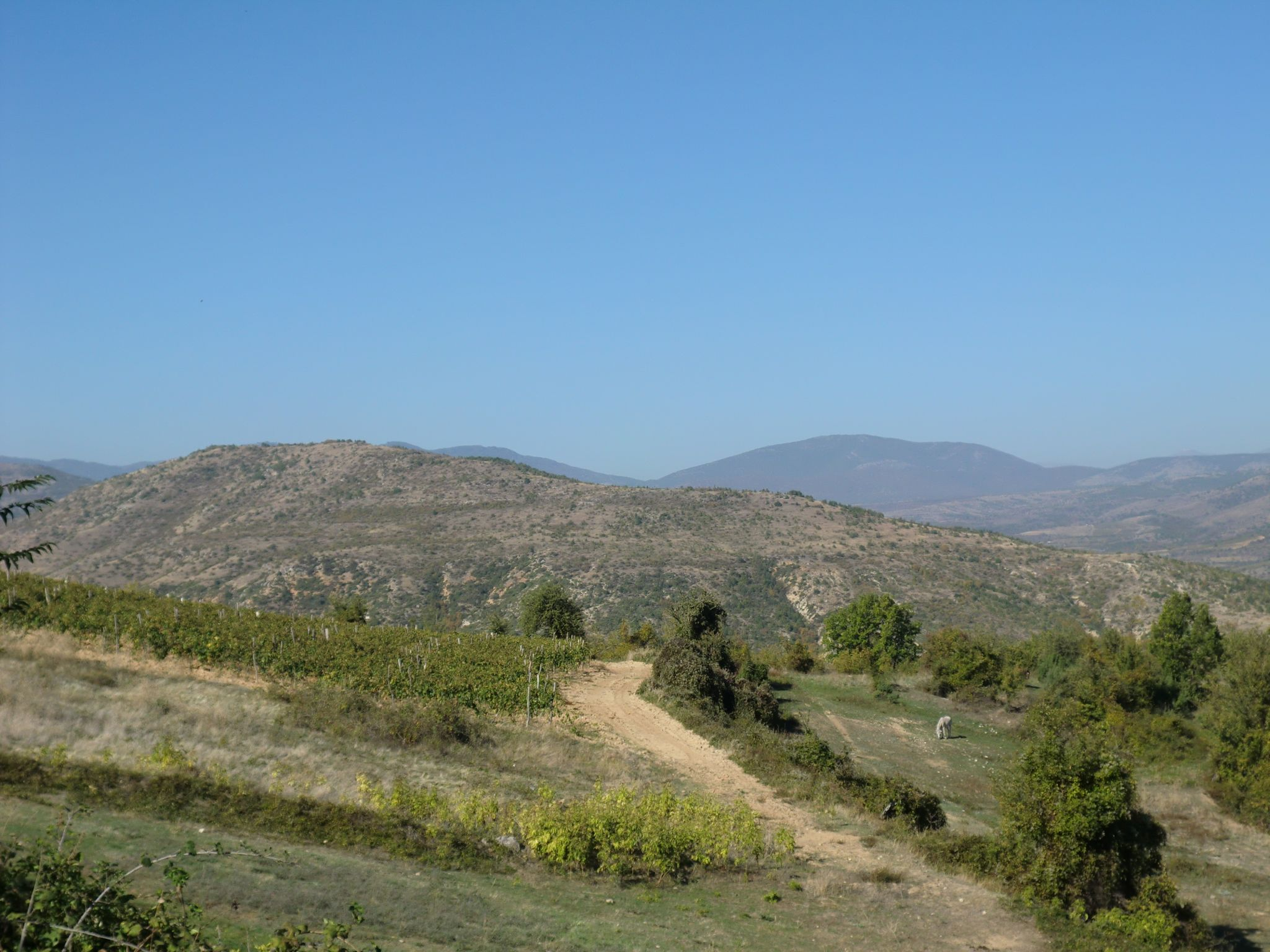 CIMG0139 - Macedonian landscapes