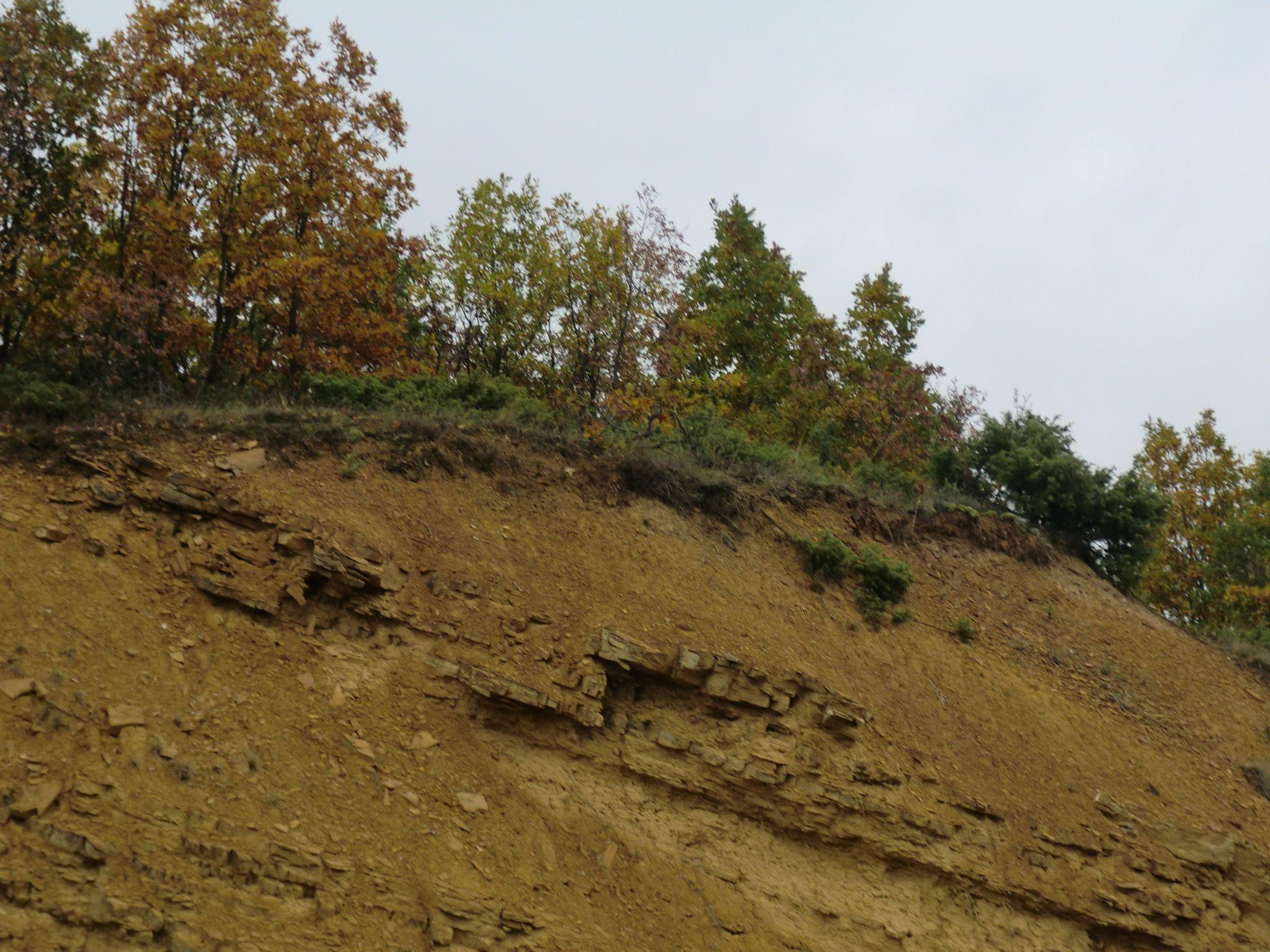 CIMG0296 - Macedonian landscapes