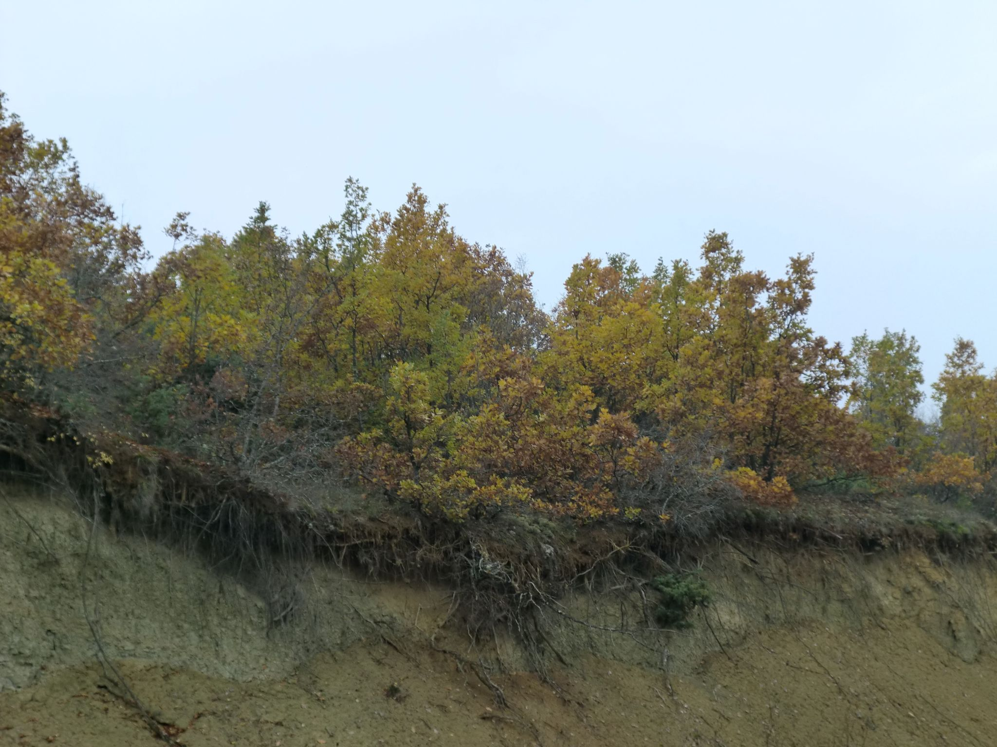 CIMG0297 - Macedonian landscapes