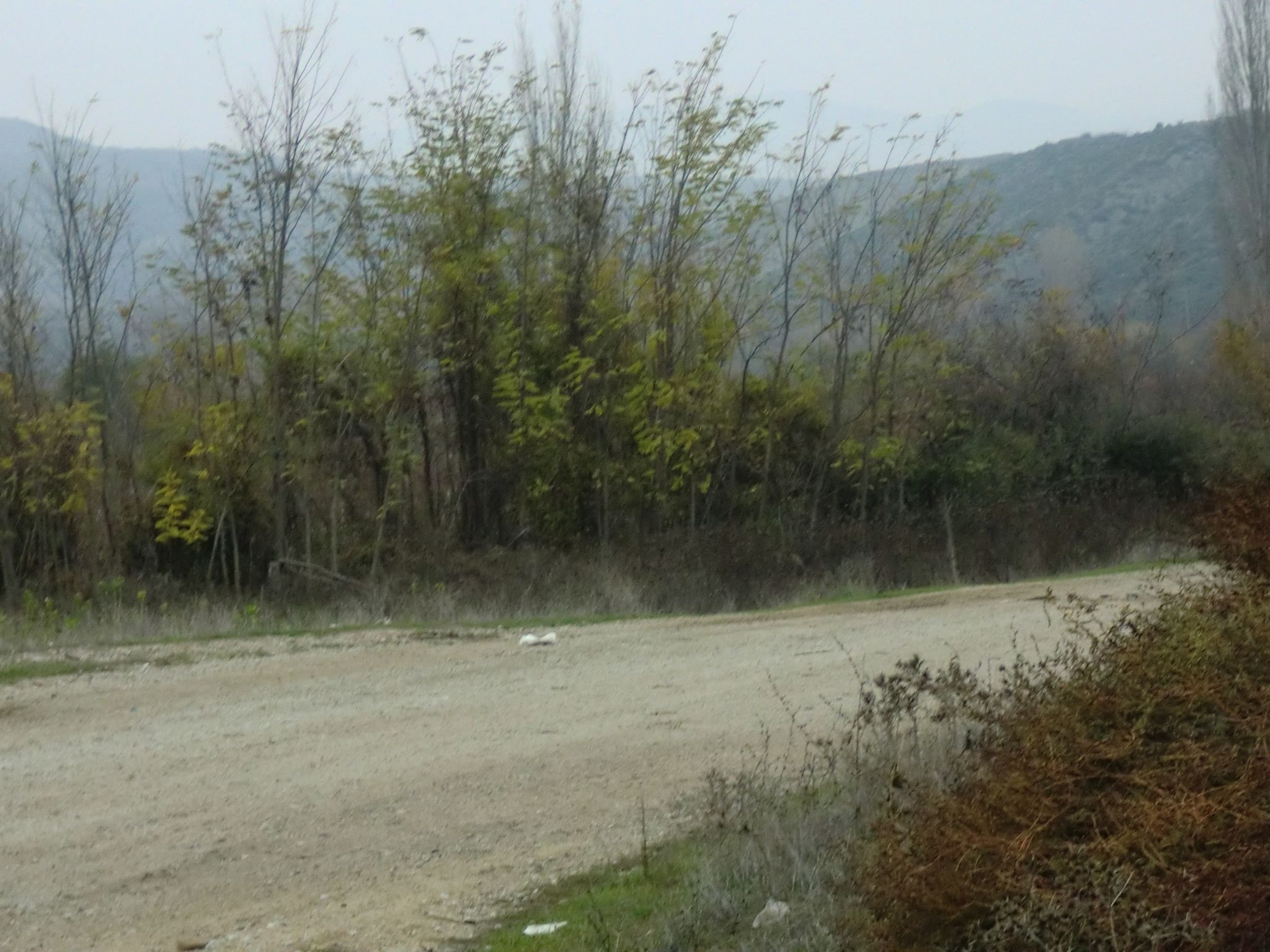 CIMG0302 - Macedonian landscapes