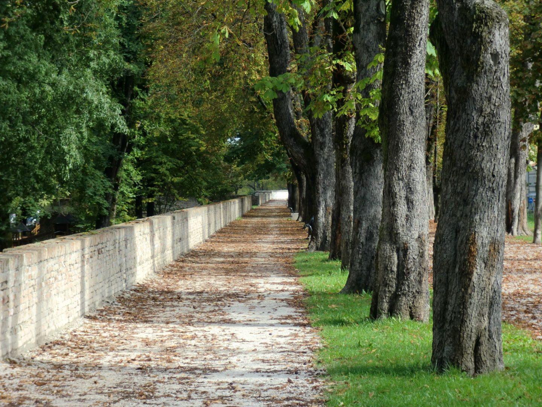 Treviso parco 1 1440x1080 - Treviso: Italian beauty