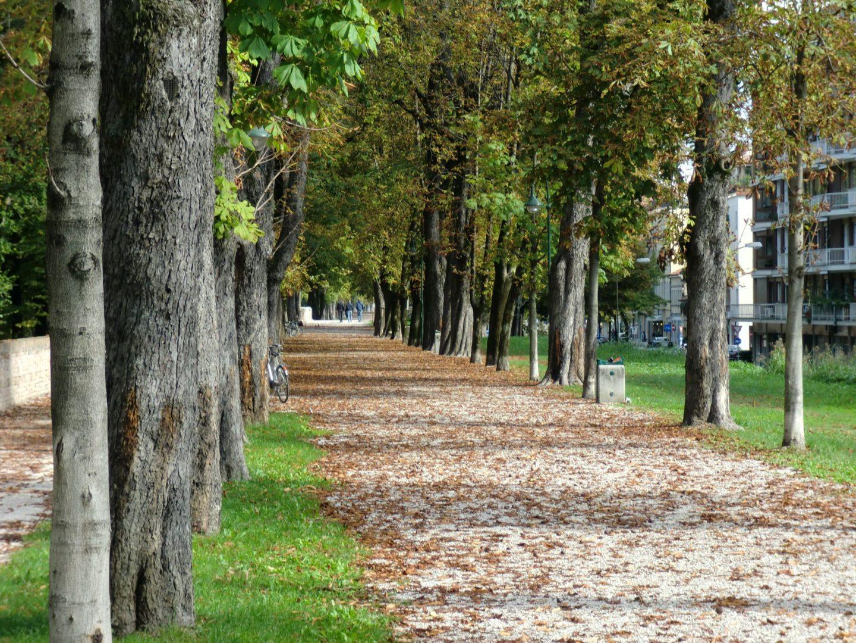 Treviso parco 2 1440x1080 - Treviso: Italian beauty