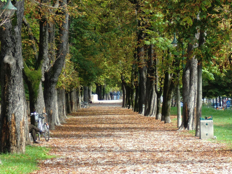 Treviso parco 3 1440x1080 - Treviso: Italian beauty