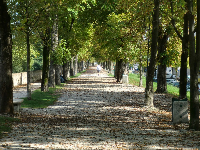 Treviso parco 4 1440x1080 - Treviso: Italian beauty