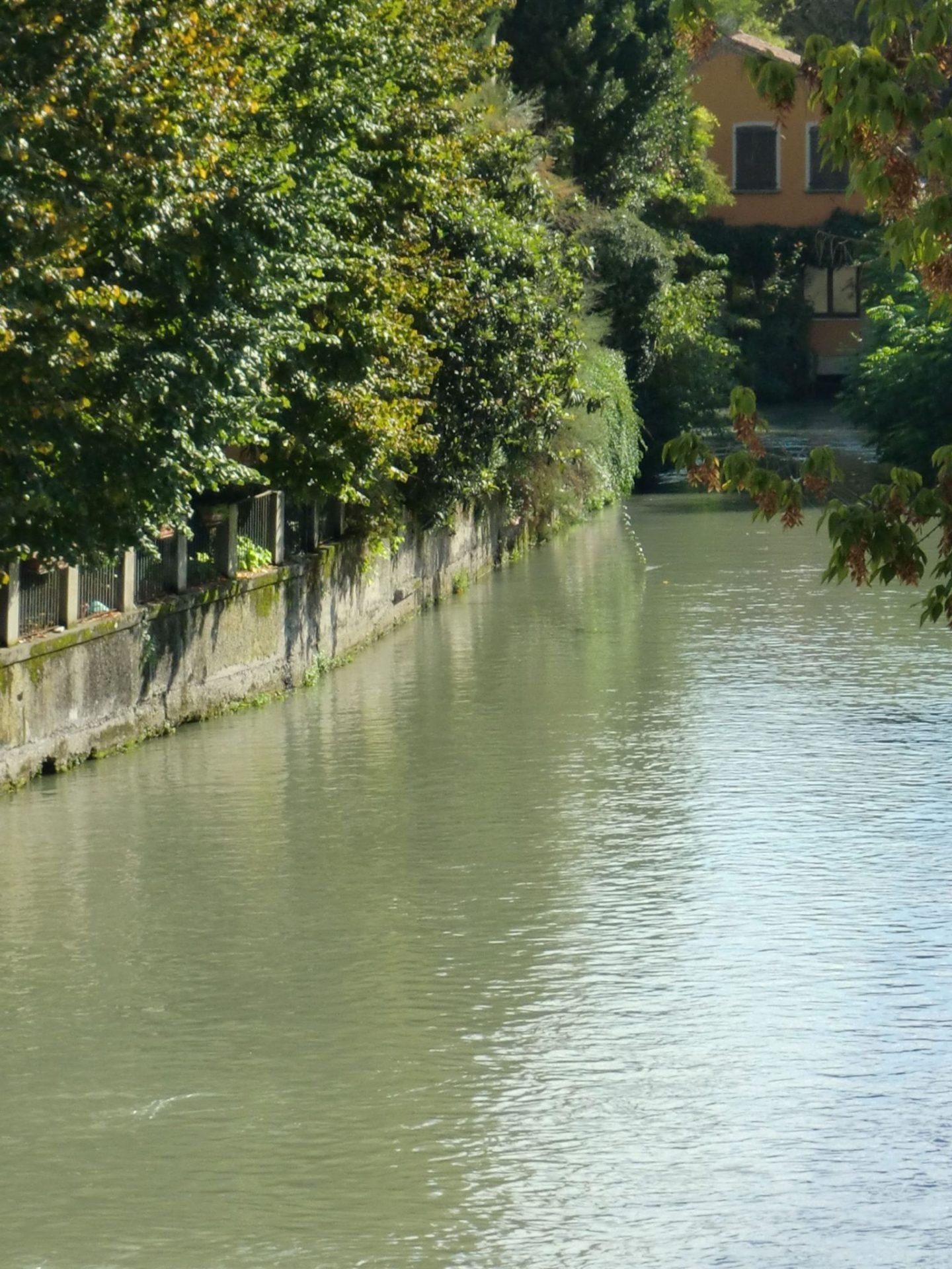 Treviso parco 5 1440x1920 - Treviso: Italian beauty