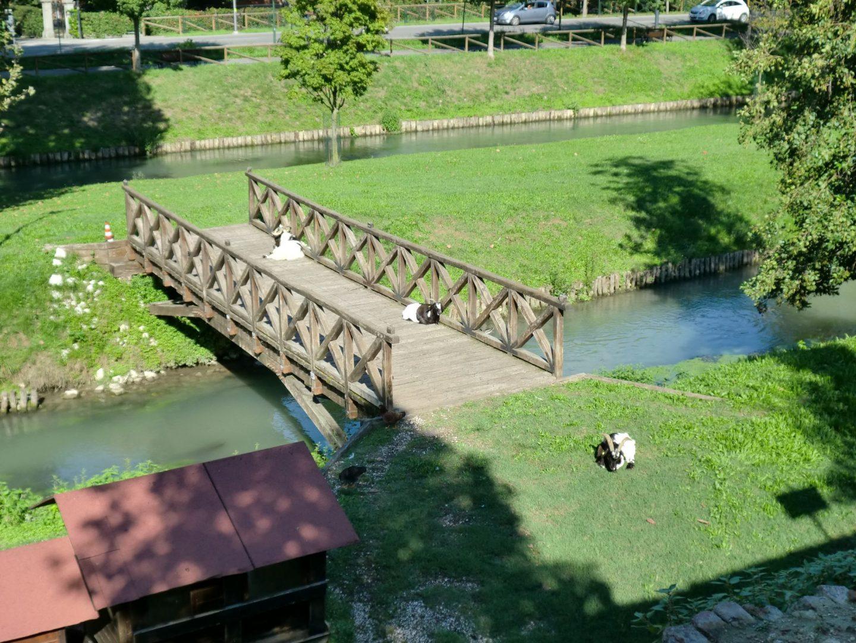 Treviso parco 8 1440x1080 - Treviso: Italian beauty