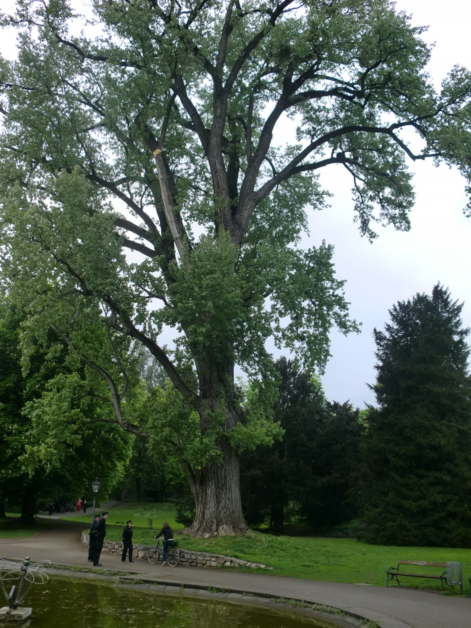 Graz park 9 - Graz: tradition and modernity