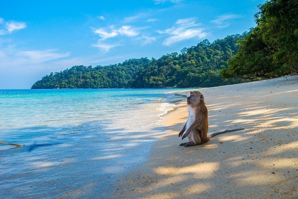 where to travel in 2020 thailand